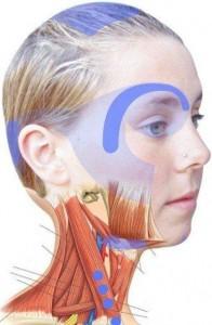 zonas-de-dolor-en-la-cabeza